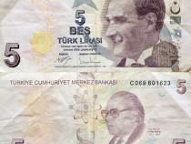 Bancnota 5 lire, 2017, turcia, circulata