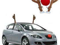Coarne ren masina, accesorii auto de sarbatori