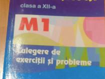 Matematica XII M1 Culegere de exercitii si probleme Burtea