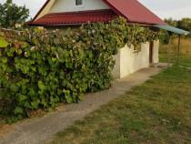 Casa si teren 2850mp in comuna Girov judetul Neamt