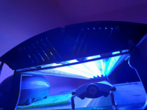 Lampa acvarii marine si nu numai