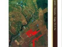 Teren intravilan Dascalu - Ilfov 117.000 mp
