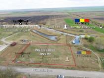 Teren Dunăvățul de jos, 2000 MP, Puz făcut, proiect pensiun