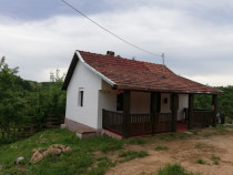 Casa în Fizesti