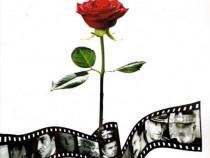 Destin și film - Destăinuirile unui cineast