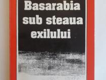 Basarabia sub steaua exilului - Mihai Cimpoi / R2P2F