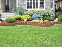 Amenajare curte, gradina, spatiu verde, peisagistica
