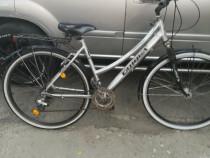 Bicicleta Canoga 24 viteze