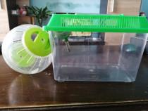 Cușcă transport și bilă hamster