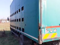 Camion transport stupi si 54 lazi