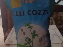 Seminte trifoi alb furajer sac 10kg
