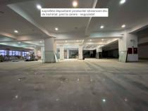 Suprafete (depozitare, showroom s.a.), 700mp, Tatarasi