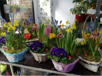 Realizam Aranjamente 1-8 martie-cos cu flori de primavara
