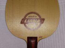 Lemn paleta tenis de masa Andro Ligna OFF