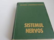 Medicina sistemul nervos badiu exarcu