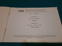 125 modele populare maghiare în cruciulițe/ csulak magda/ 19