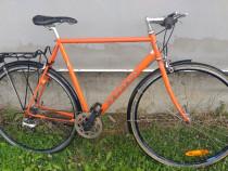 Bicicleta semicursa
