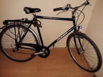 Bicicletă adulți