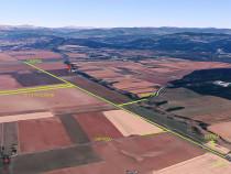 Teren Extravilan Arabil, Agricol, 5700 mp pe DN1 - Prahova