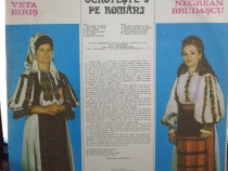 Colectie speciala 15 VINIL muzica populara, lautareasca