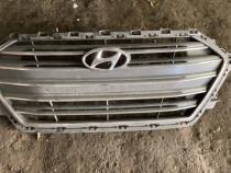 Grila radiator bara fata Hyundai Elantra 2015 - 2018