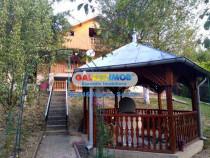 Casa Visinesti, Dambovita