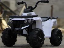 ATV electric pentru copii Panda BB3201 motor 25W baterie 6V
