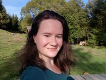 Meditatii Norvegiana Online