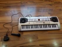 Orga electronica cu ecran digital   49 de clape+microfon