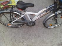 Biciclete diverse dimensiuni
