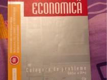 Informatica economica - probleme Editura Risoprint