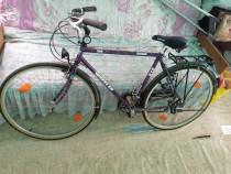 Biciclete echipate shimano