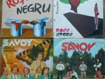 Lot de Discuri 16 vinyl muzică românească ,