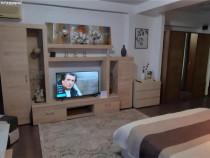 Apartament 1 camera situat in zona Aradului