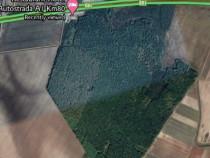 Padure stejar-Arges 346000 mp