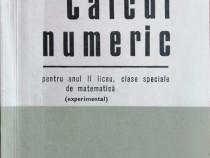 Virgil Brisca - Calcul numeric anul II liceu, 1972