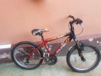 Bicicletă copii-20ingi