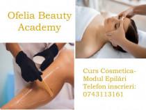 Curs Specializare Cosmetica Resita