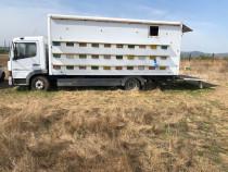 Camion apicol cu stupi 7,5T 60 stupi Mercedes Atego