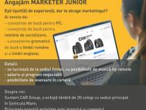 Marketer JUNIOR - entry level