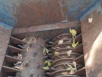 Perforator industrial PET , Bidoane
