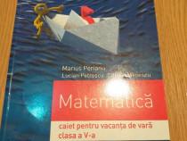 Matematica - caiet pentru vacanta de vara - clasa a V-a