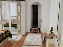 Apartament 2 Camere mobilat utilat vest Aleea Parcului