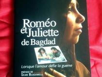 Romane limba franceza