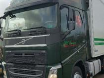 Sofer camion categoria C+E-transport flori Danemarca