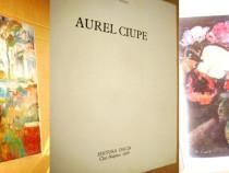 6631-Album de Arta: Aurel Ciupe anii 70-80 cartonat gros.