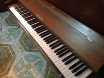 Pianina Luxor SF108,serie limitata