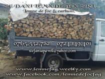 Lemne de foc fag - Lemne de foc carpen - Lemne de foc stejar