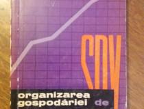 Organizarea gospodariei de SDV - V. Radetchi / R1F