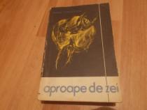 Radu Theodoru - Aproape de zei